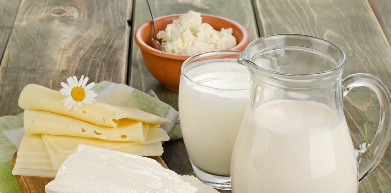 Dairy export a privilege for Iran to boost regional trade