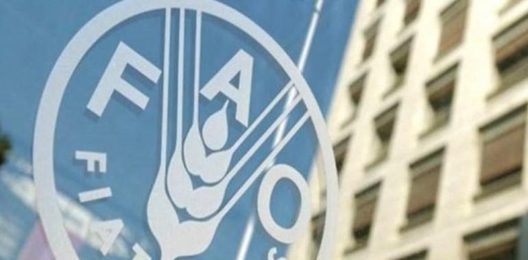 هشدار فائو: مقاومت میکروبی امنیت غذایی و معیشت میلیونها خانوار کشاورز را تهدید میکند
